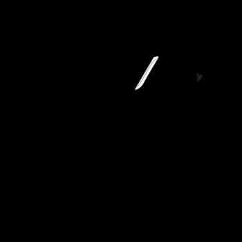 el primer corte jamom iberico (foto)